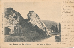 CPA - Belgique - Le Tunnel De Fidevoye - Yvoir