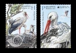 Belarus 2019 Mih. 1300/01 Europa. National Birds. Fauna. Storks MNH ** - Belarus