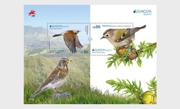 H01 Portugal 2019 Azores - Birds Vögel Europa 2019 Miniature Sheet - 1910-... Republik