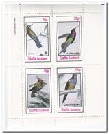 Staffa 1982, Postfris MNH, Birds - Regionale Postdiensten