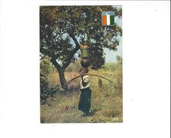 COTE D IVOIRE RETOUR DU MARCHE ****  A  SAISIR *** - Côte-d'Ivoire