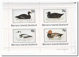 Bernera Islands 1981, Postfris MNH, Birds - Regionale Postdiensten