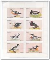 Staffa 1973, Postfris MNH, Birds, Scoutsday - Regionale Postdiensten