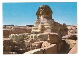 Egypt Giza The Sphinx Non Viaggiata Condizioni Come Da Scansione - Gizeh