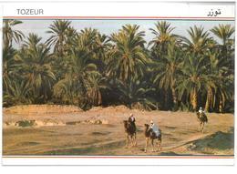 Tunisia Tozeur  Promenade à Travers L'Oasis Non Viaggiata Condizioni Come Da Scansione - Tunisia