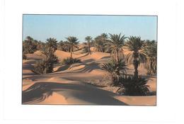 Marocco Non Viaggiata Condizioni Come Da Scansione - Marocco