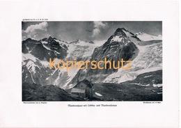 428 Madronhaus Rifugio Città Di Trento Alpenverein Berghütte Kunstblatt Kunstblatt  1916 !! - Unclassified
