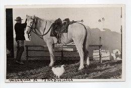 - CPA LES SAINTES-MARIES-DE-LA-MER (13) - Le Marquis De BARONCELLI-JAVON Et Son Cheval SULTAN - Photo George - - Saintes Maries De La Mer