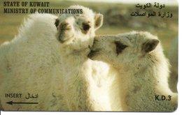 Chameau  CAMEL Animal Télécarte Telefonkarten Phonecard (G 132) - Kuwait