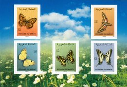 2019 - Papillons - Butterflies - Morocco (1956-...)