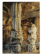 Slovenia Slovenija  Postojnska Jama Le Grotte  Viaggiata 1968 Condizioni Come Da Scansione - Slovenia