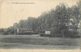08 GRANDPRE  Haras De Talma    2 Scans - France