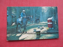 Horse Racing Saratoga Race Track  Saratoga NY    . Ref 3344 - Postcards