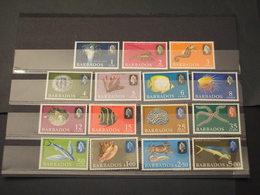 BARBADOS - 196... FAUNA MARINA 15 VALORI - NUOVI(++) - Barbados (1966-...)