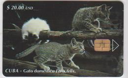 #09 - CUBA-09 - CATS - Cuba
