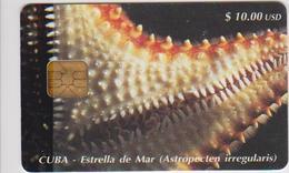 #09 - CUBA-13 - ESTRELLA DE MAR - Cuba