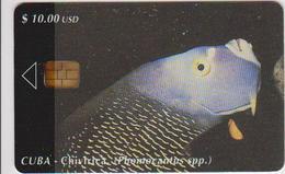 #09 - CUBA-14 - FISH - Cuba