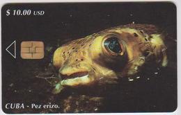 #09 - CUBA-15 - FISH - Cuba