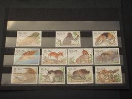 BELIZE - 2000 ANIMALI 11 VALORI - NUOVI(++) - Belize (1973-...)