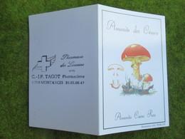 """Calendrier De Poche 1993 Pharmacie Des Lauriers """"C & J-P TAGOT""""  à Montargis Loiret - Calendars"""