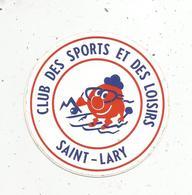 Autocollant , Sports , Club Des Sports Et Des Loisirs ,  SAINT LARY ,  Ski , 65 - Autocollants
