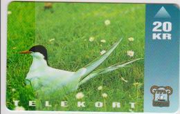 #09 - FAROE ISLANDS-04 - 20KR - BIRD - Faroe Islands