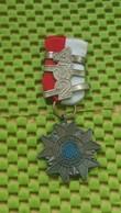 Medaille / Medal - Medaille - Avondvierdaagse - N.U.B - 2-3-4. -  The Netherlands - Netherland