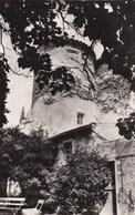 Ars-en-Ré - La Maison Du Sénéchal - Ile De Ré