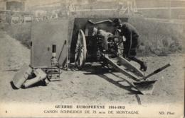 GUERRE EUROPEENNE DE 1914-1915 - Canon Schneider De 75 M/m De Montagne - (n°4). - Guerre 1914-18