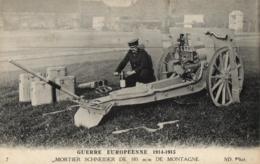 GUERRE EUROPEENNE DE 1914-1915 - Mortier Schneider De 105 M/m De Montagne - (n°7). - Guerre 1914-18