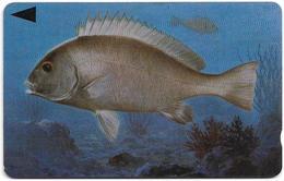 Bahrain - Fish Of Bahrain - Grey Grunt - 39BAHU (Normal 0), 1996, 500U, Used - Bahrain