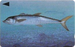 Bahrain - Fish Of Bahrain - Spanish Mackerel - 39BAHR (Dashed Ø), 1996, 200.000ex, Used - Bahrain