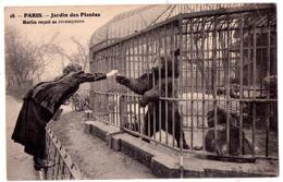 4422 - Paris ( 5e ) - Jardin Des Plantes - Martin Reçoit Sa Récompense - N°18 - - Paris (05)