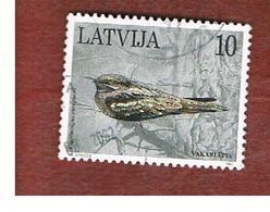 LETTONIA (LATVIA)   -  SG 463  -  1997  BIRDS: CAPRIMULGUS EUROPAEUS  -   USED - Lettonia