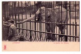 4433 - Paris ( 5e ) - Jardin Des Plantes ( L' Eléphant ) - Künzli Frères édit. - - Paris (05)