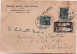 Federazione Nazionale Ordini Veterinari: Cartolina Pubblicitaria Viaggiata 1954 Veterinario - Beroepen