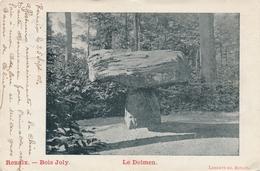 CPA - Belgique - Renaix - Bois Joly - Le Dolmen - Renaix - Ronse