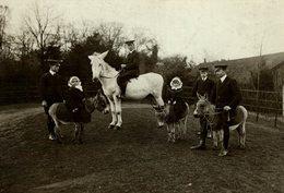 MR WINGFIELD 'S FARM AMPTHILL LAMAS , ZEBRAS, OSTRICHES AN ANDALUCIEN DONKEY  15 * 11 CM Fonds Victor FORBIN 1864-1947 - Personas Identificadas