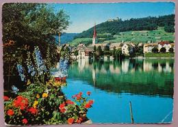 STEIN Am Rhein Mit Burg Hohenklingen - Vg - SH Schaffhouse