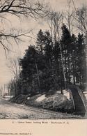 Sherbrooke Québec - Rue Queen Street Looking North - Pinsonneault Frères - Written 1905 - 2 Scans - Sherbrooke