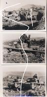 19 1943 Beute Italienische Panzer Wehrmacht Übung. Repros - 1939-45