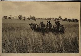 Australia (SA) Harvester On A South Australian Farm 19?? Tucks Card - Australië