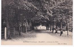 02 Aisne - HIRSON - BLANGY - Avenue Du Bois - Cachet Syndicat Initiative Du Commerce Hirsonnais - Hirson