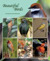 Palau 2018  Fauna Birds  I201901 - Palau