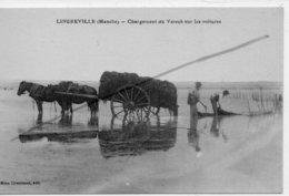 LINGREVILLE CHARGEMENT DU VARECH SUR LES VOITURES - France