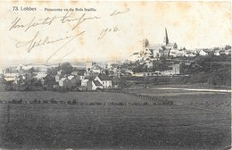 Lobbes NA23: Panorama Vu Du Bois Feuillu 1906 - Lobbes