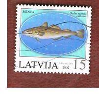 LETTONIA (LATVIA)   -  SG 585  -  2002 FISHES: GADUS MORRHUA    -   USED - Lettonia