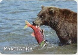 Calendar Russia 2020 - Animals - Bear - Sea - Fish - Fishing - Beautiful - Travel - Advertising. - Calendars