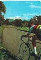 Championnats Du Monde De Cyclisme Sur Route 1964 - Wielrennen