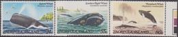 Norfolk - 1982 Fauna Marina, Balene 282/84 MNH** - Isola Norfolk